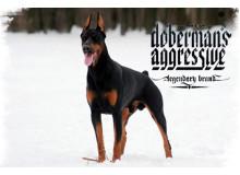 Одежда Dobermans Aggressive